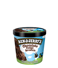Chocolate Fudge Brownie Original Ice Cream Mini Cups