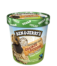 Chocolate Chip Cookie Dough Non-Dairy Frozen Dessert